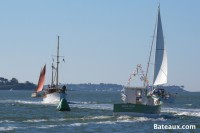 Sailing, motor, ancient and modern, everything meets at the Gulf Week